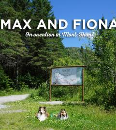Max and Fiona on vacation in Mont-Ham