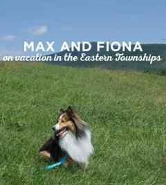 Max and Fiona on vacation in the Eastern Townships