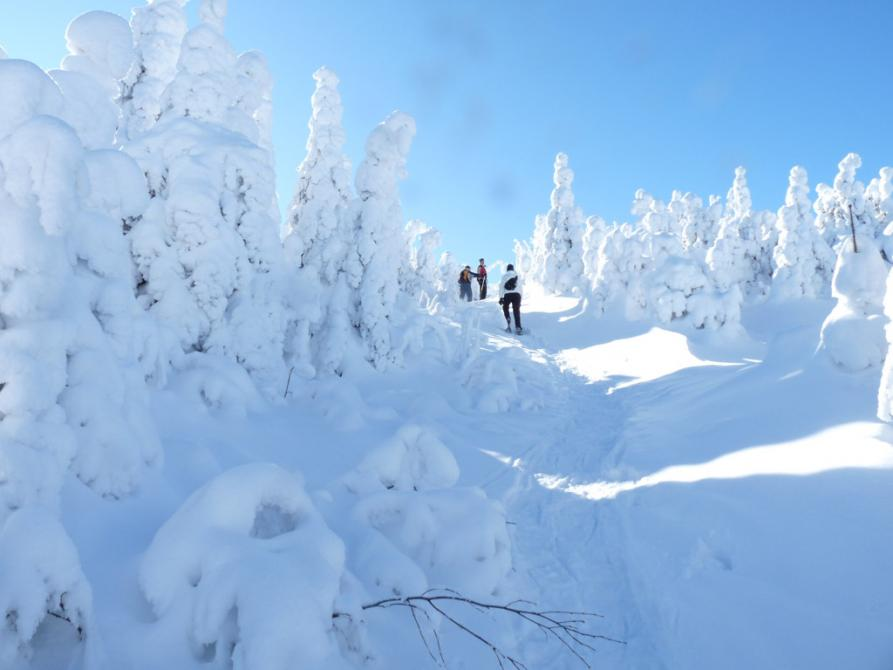 Mont Hereford - snowshoe: