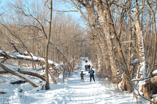 Parc du Bois-Beckett: Sherbrooke - Urban walks