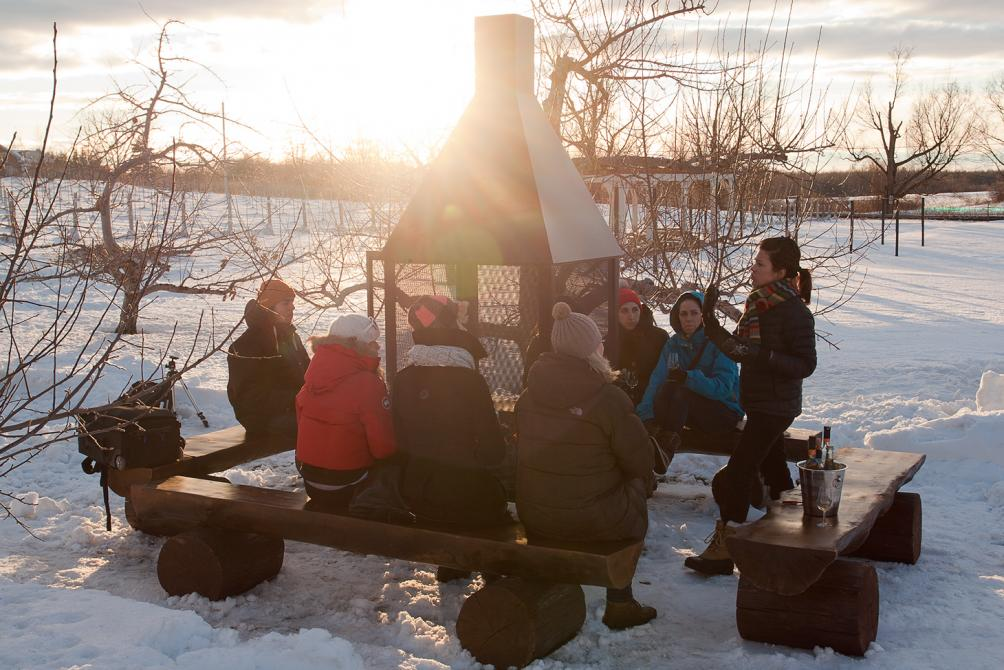 Ice wine tour: Apple ciders tasting around a fire - UNION LIBRE cidre & vin