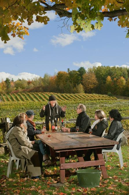 Wine Country tours: Tasting with the winemaker - Domaine des Côtes d'Ardoise