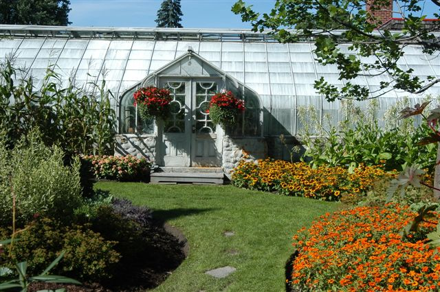 The Carl-Camirand Greenhouses Garden: Self-guided visits of the outdoor gardens available from May to October. The municipal greenhouses are accessible all the year round, Monday through Friday, from 8 a.m. to 3 p.m. A rarely blooming plant can still be found in Sherbrooke's greenhouses, the queen-of-the-Night or epiphyllum oxypetalum, introduced to the greenhouses' collection in the 1950s, during Senator Charles B. Howard's time. A treat for connoisseurs!