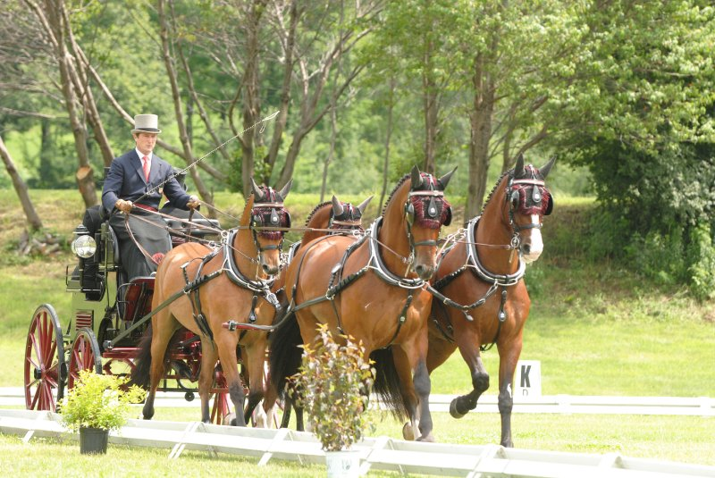 International d'attelage Bromont: ©Normand St-Jacques
