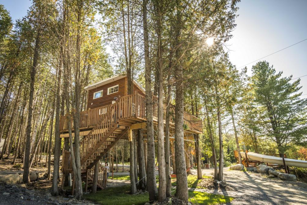 Cabania:  Mini house in the trees for an unforgettable experience whether in winter or summer (4 seasons)!