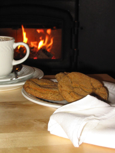 Hot chocolate and home made cookies: