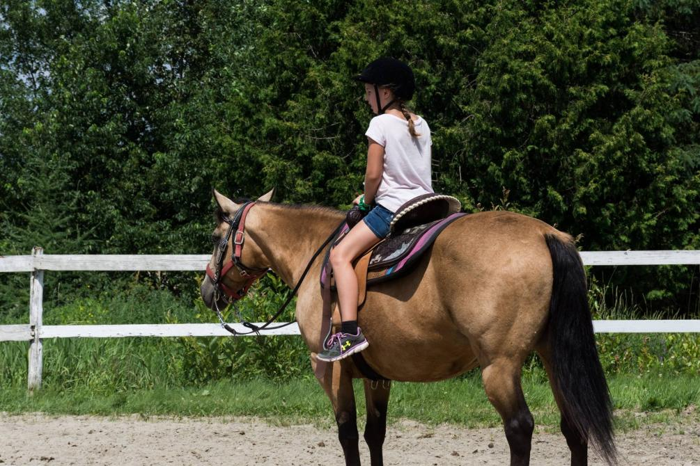 Horseback riding lesson: