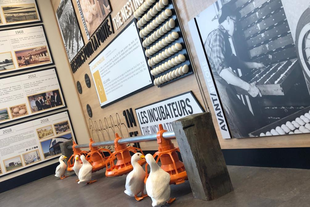 Brome Lake Ducks Ltd: Duck Interpretation Center