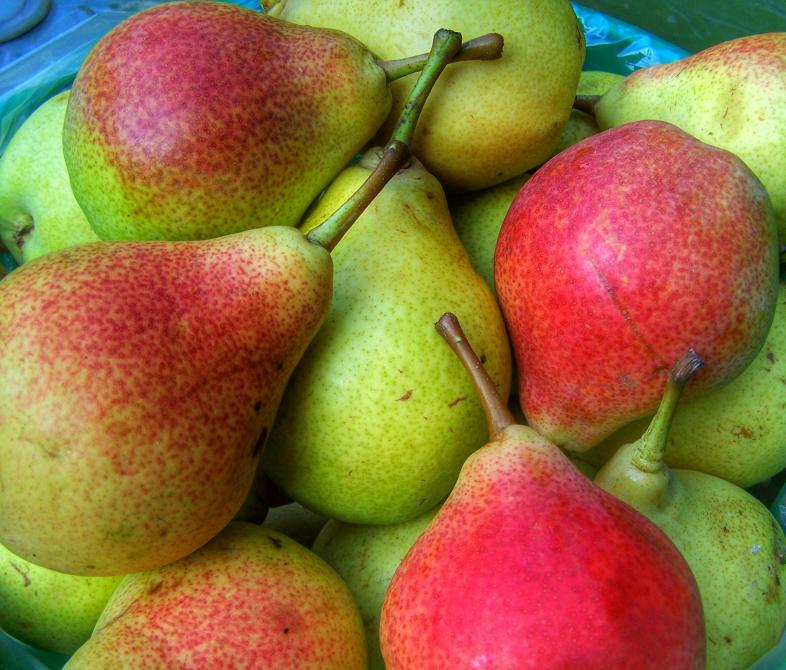 Delicious PEARS, (many varieties):
