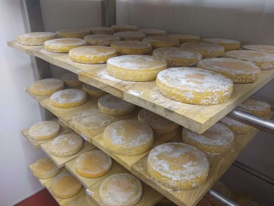 Our cheese cave: The aging of La Corne Pointue