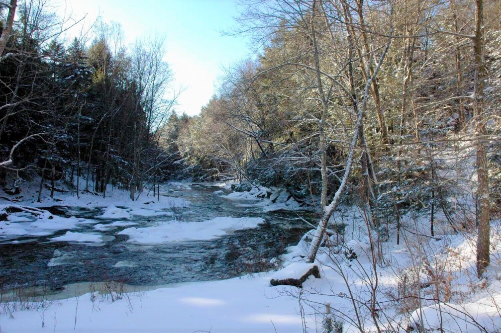 Our river during winter: We have 500 meters of river banks