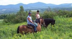 Equestrian package for lovers