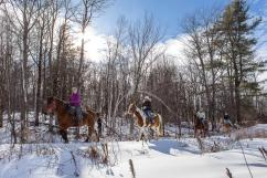 Horseback riding and dogsleigh packages