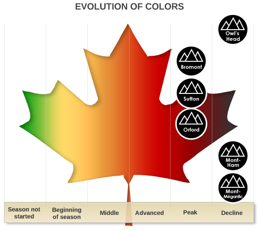 Evolution of colors